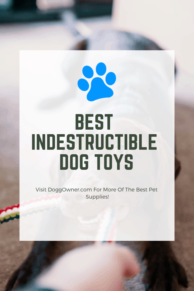best kevlar dog toys pinterest picture