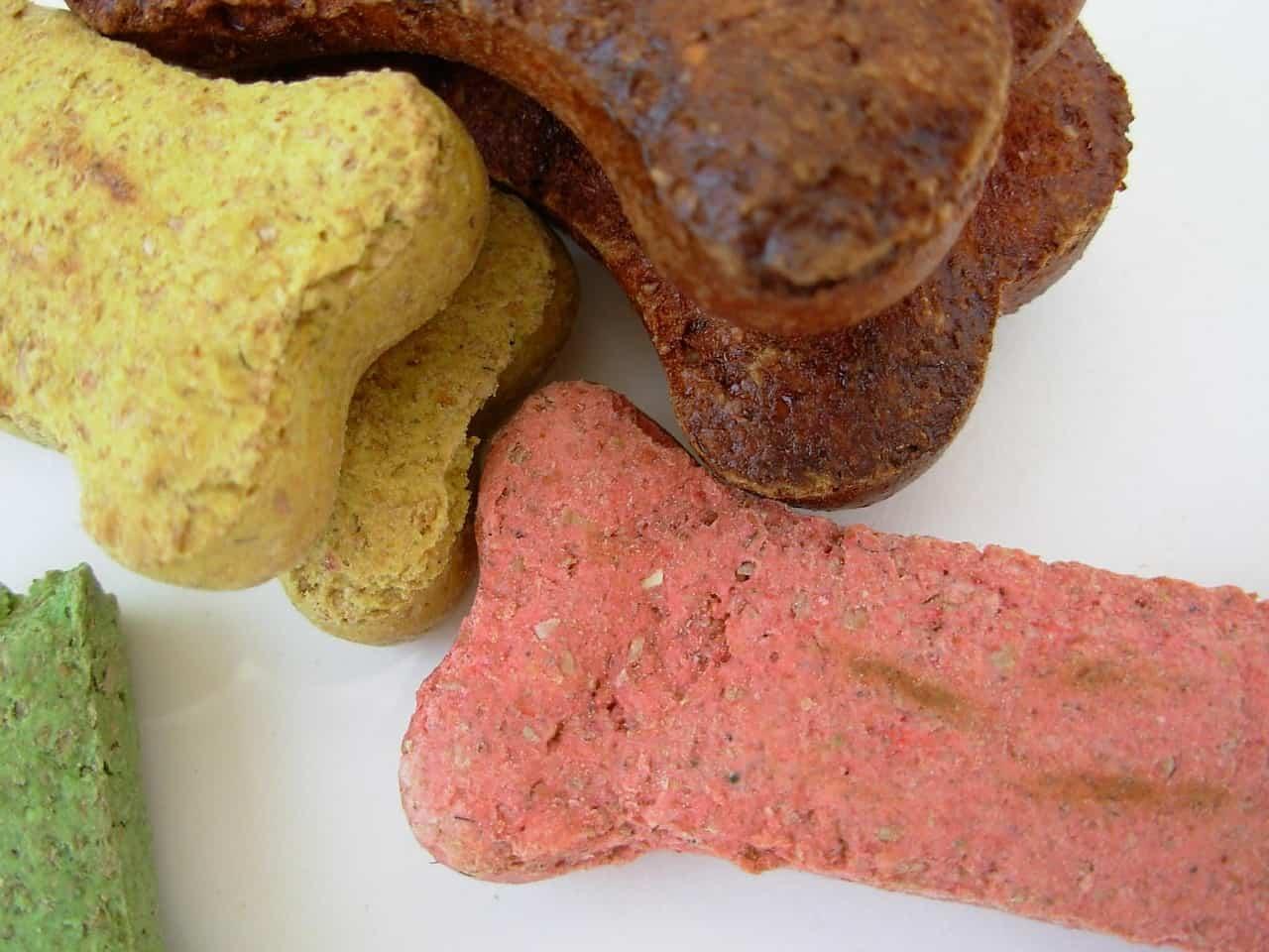 Best Homemade Dog Treat Recipes