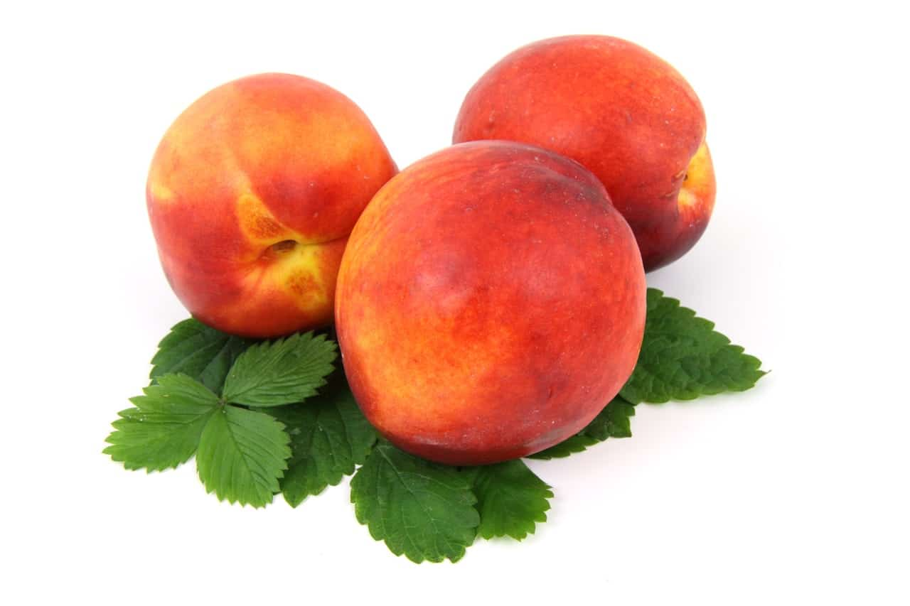 Three peaches on top of leaves