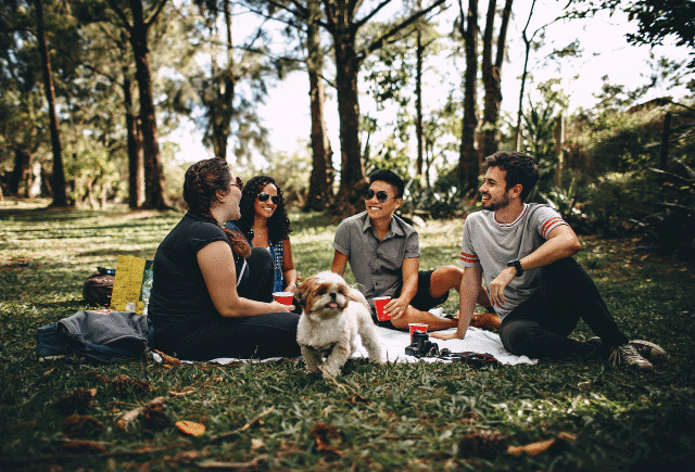 A picture of people together in a forest with a dog