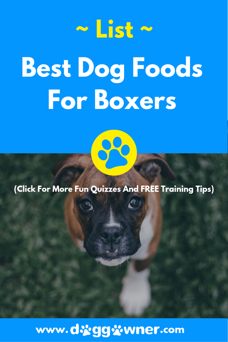 A best dog foods for boxers DoggOwner pinterest image