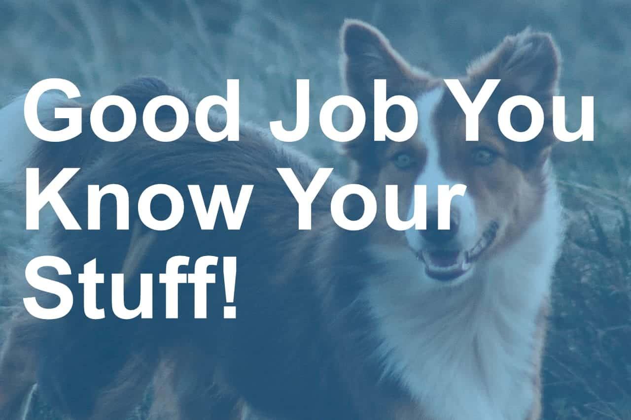 You did a good job quiz image