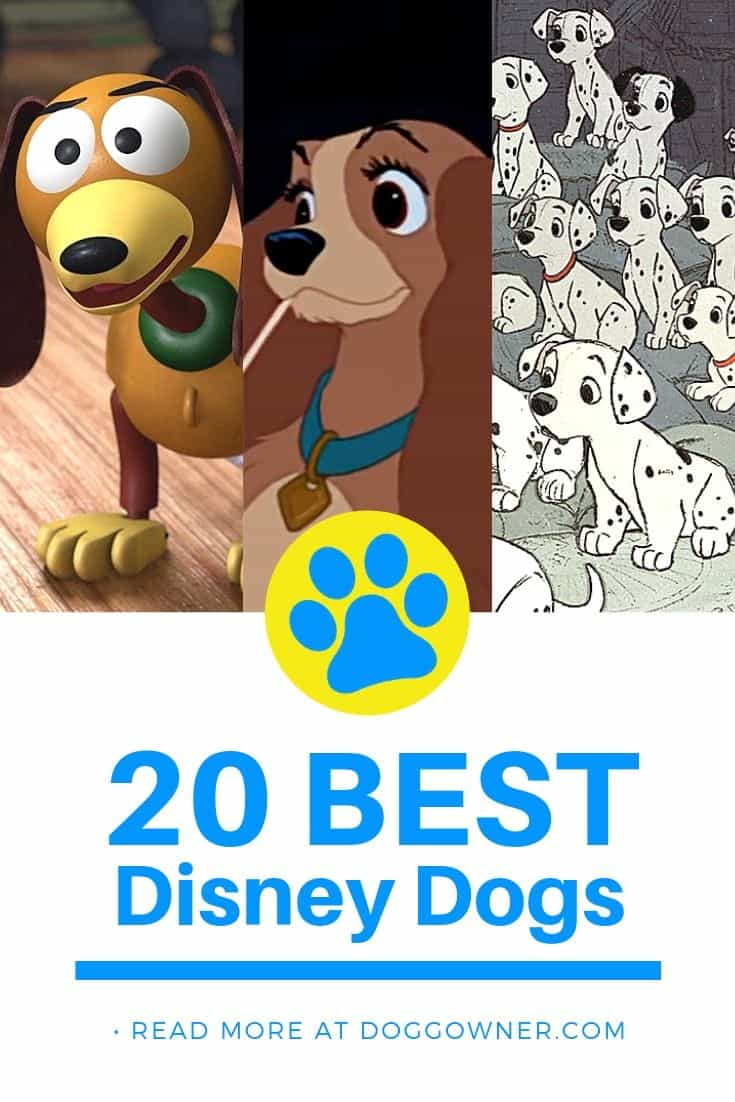 20 Best Disney Dogs Pinterest Image
