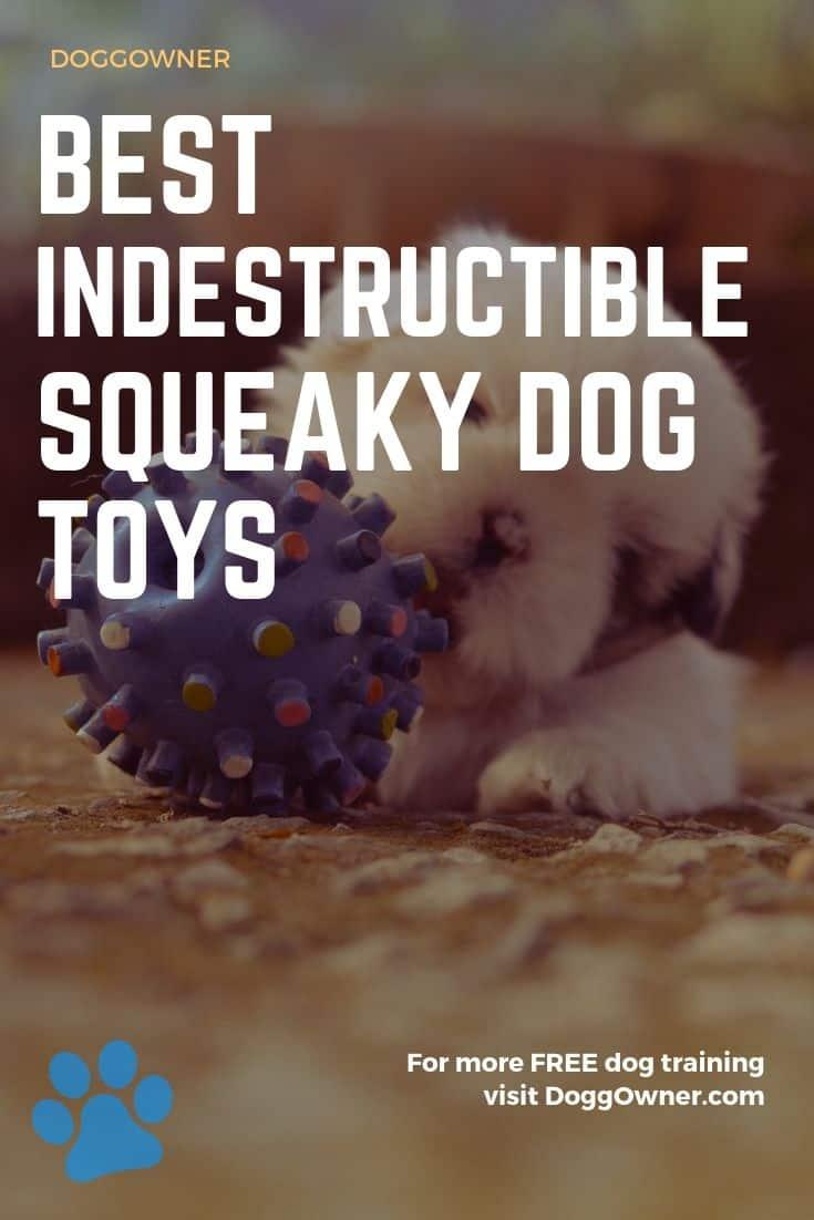 Best indestructible squeaky dog toys pinterest image