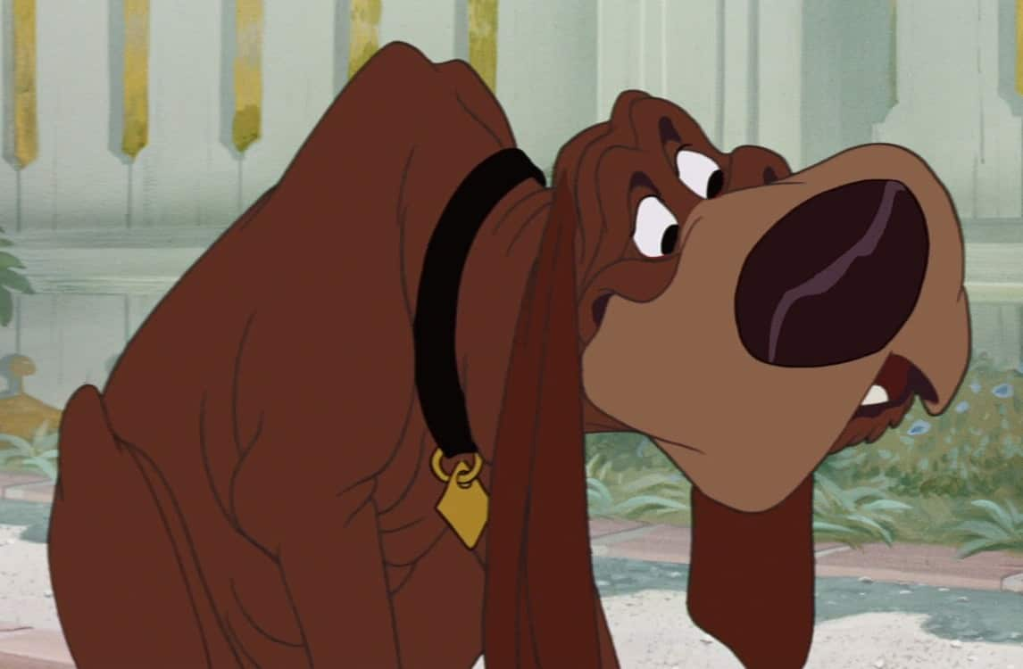 Quiz Do You Know These Disney Dogs Names Doggowner