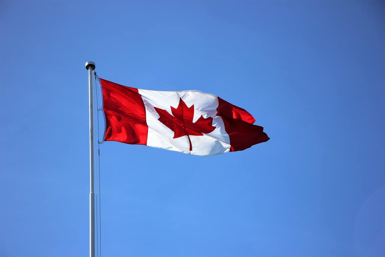 The Canadian flag with the blue sky in the background to represent the origins of these dogs.