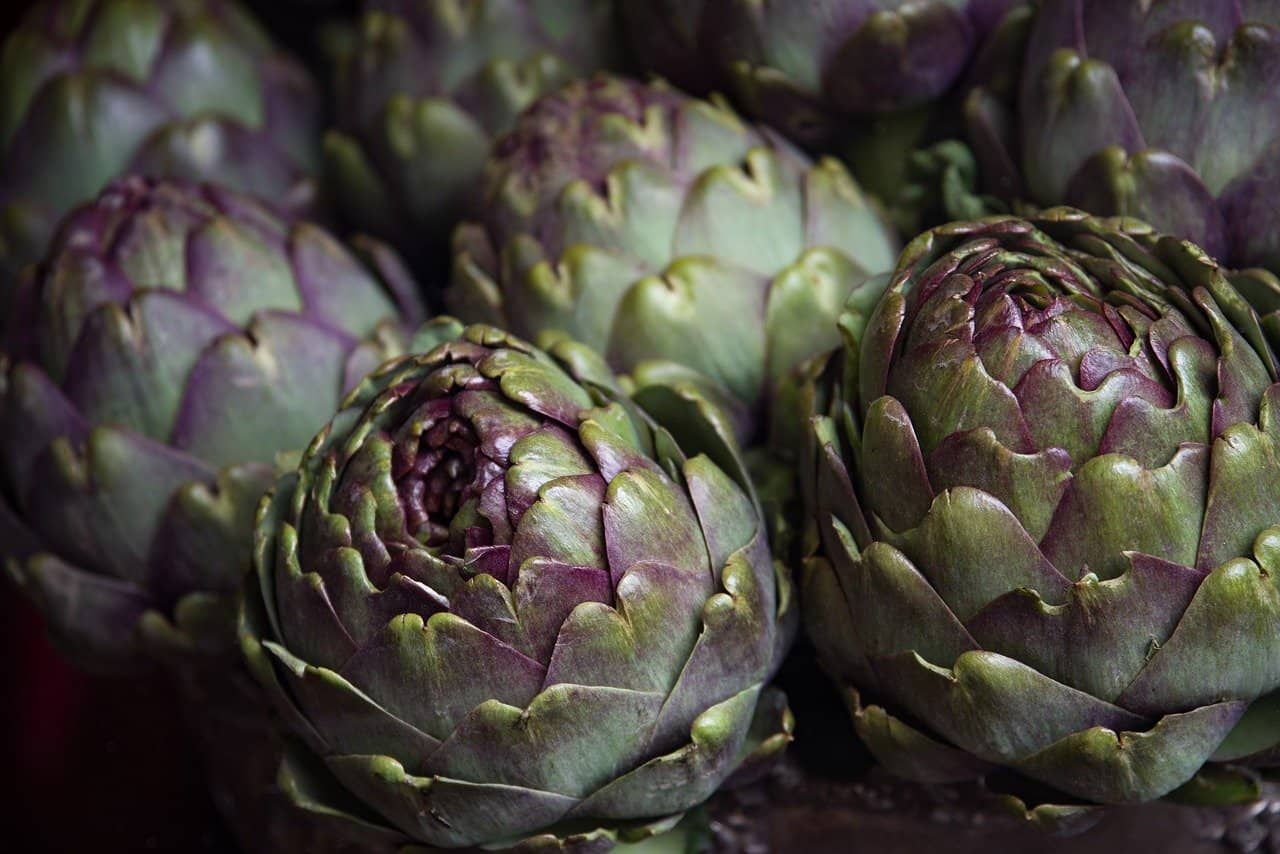 Can Dogs Eat Artichokes?