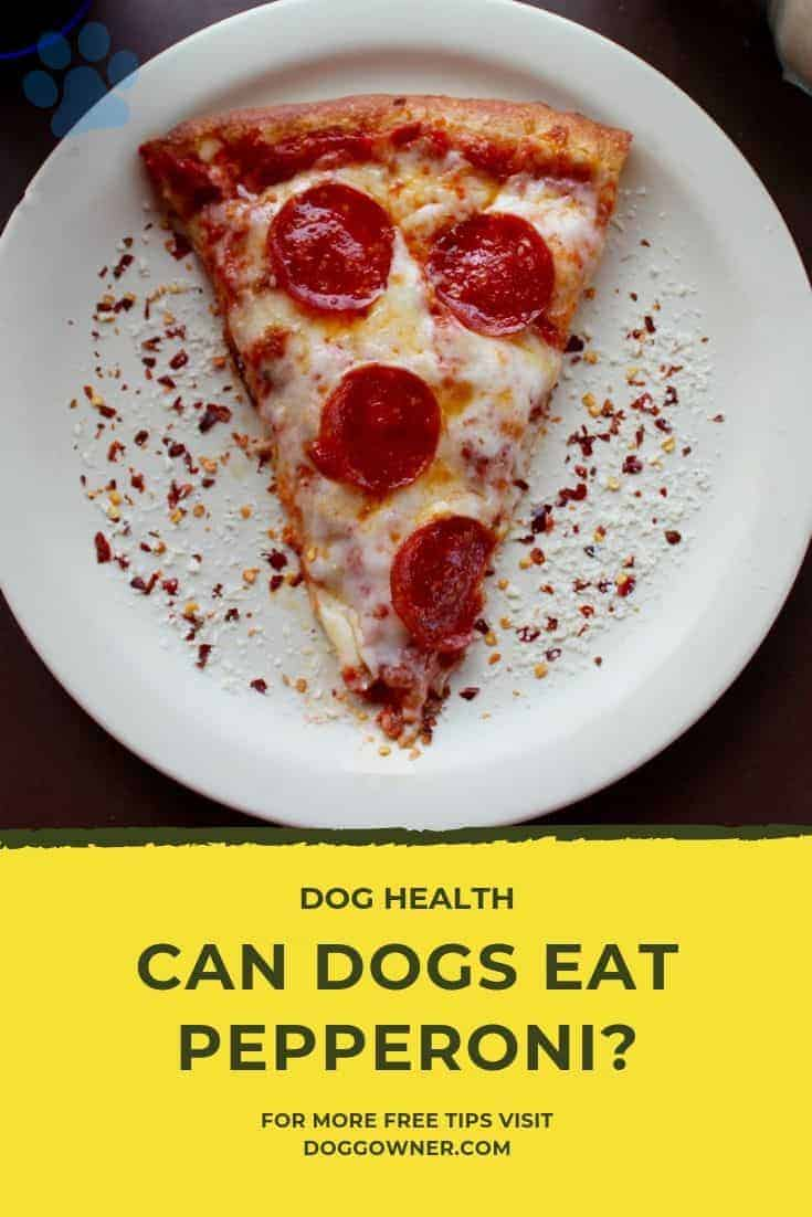 Can dogs eat pepperoni Pinterest image