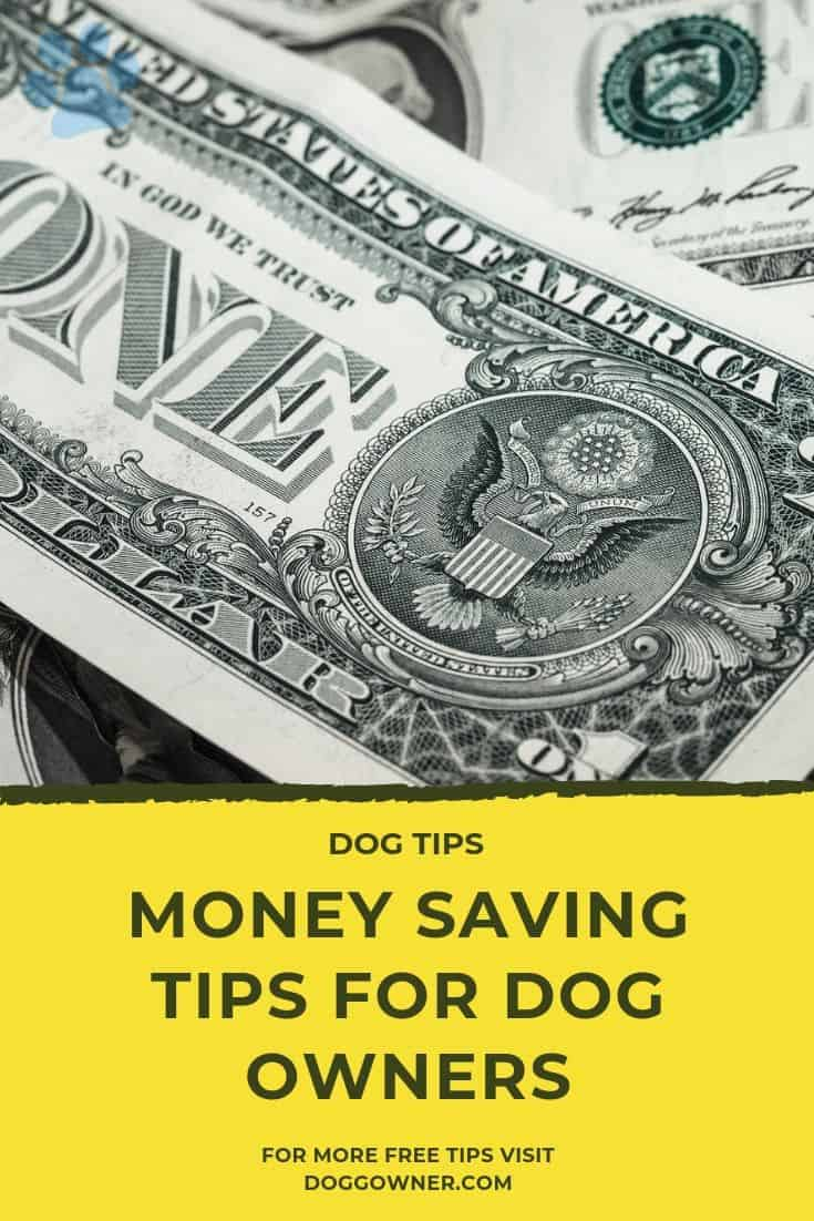 Money saving tips for dog owners Pinterest image