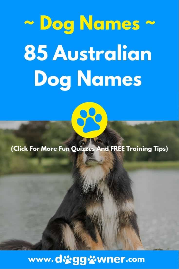 Australian dog names Pinterest image
