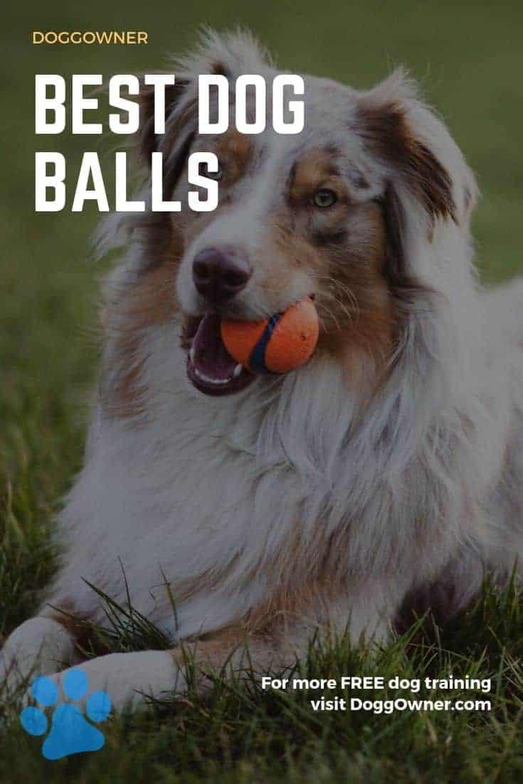 Best dog balls Pinterest image