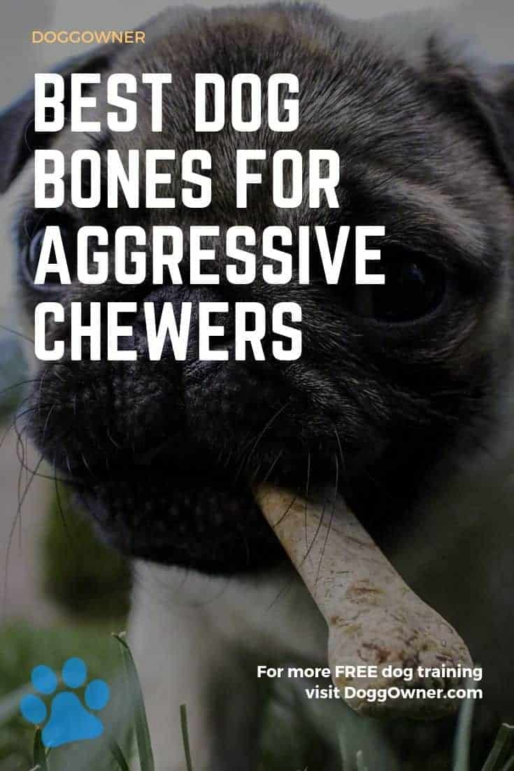 Best dog bones for aggressive chewers Pinterest image