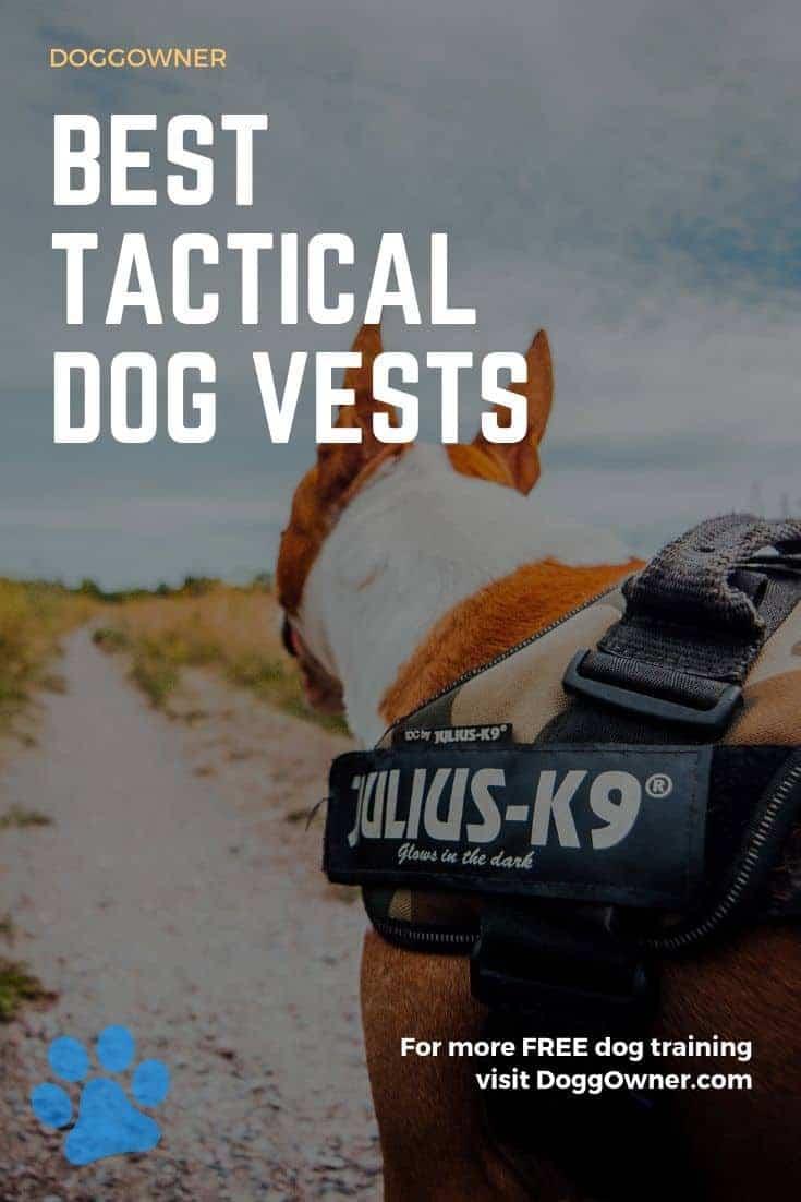 Best tactical dog vests Pinterest image