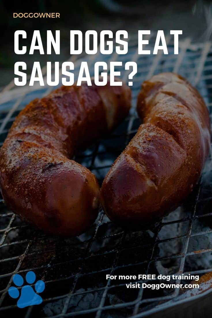 Can dogs eat sausage Pinterest image