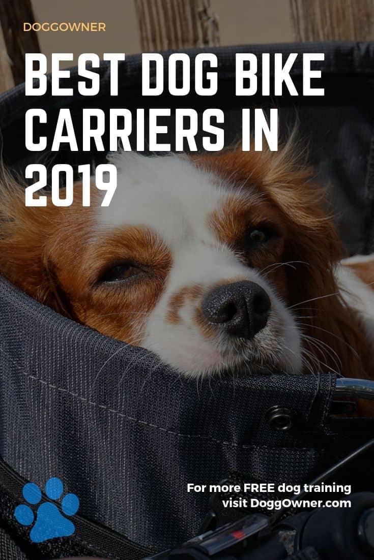 Best dog bike carrier Pinterest image
