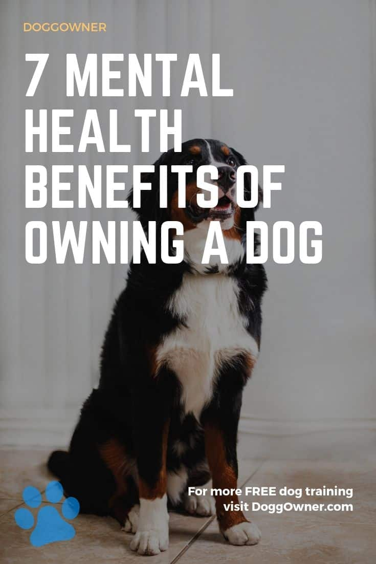Mental health benefits of owning a dog Pinterest image