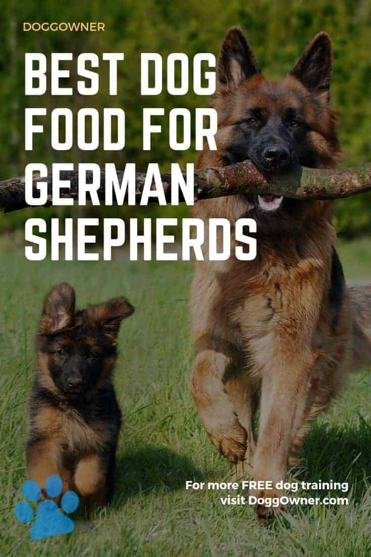 Best dog food for German Shepherds Pinterest image
