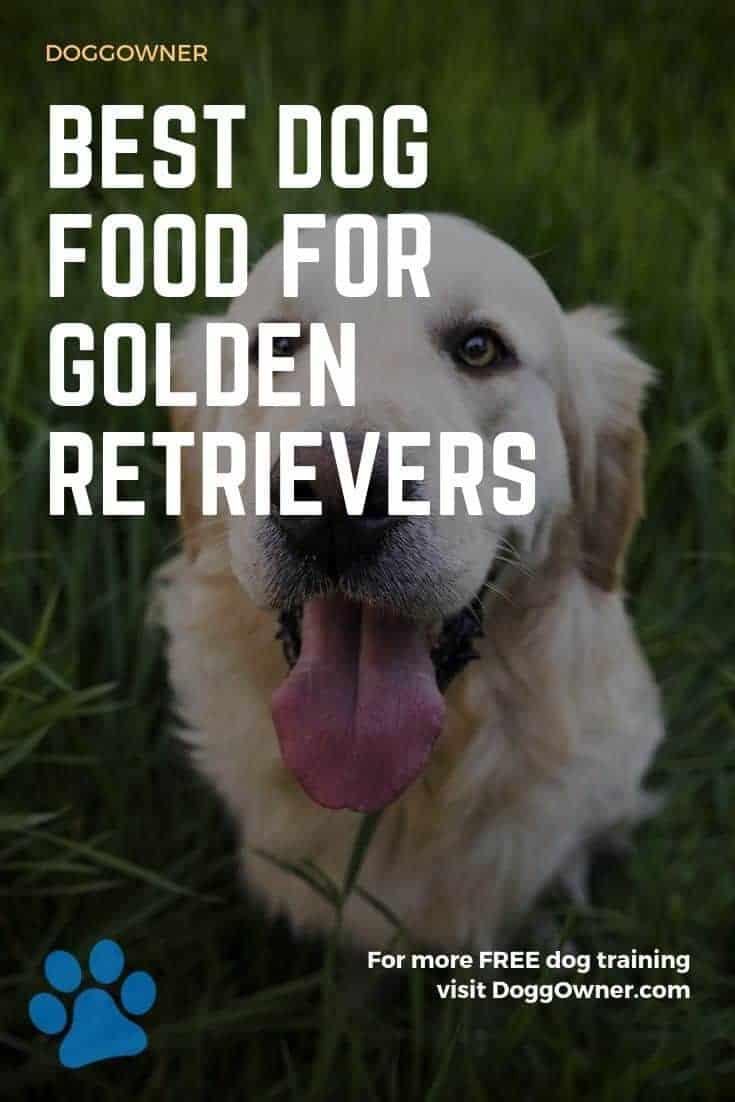 Best dog food for Golden Retrievers Pinterest