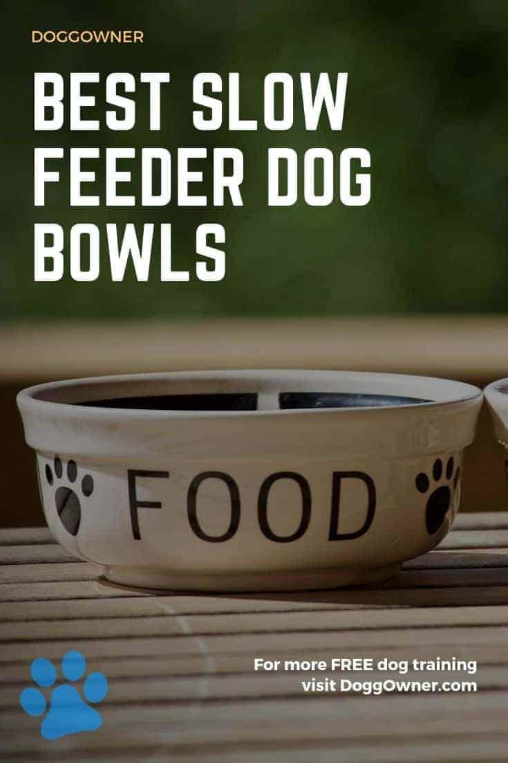 Best slow feeder dog bowls Pinterest image
