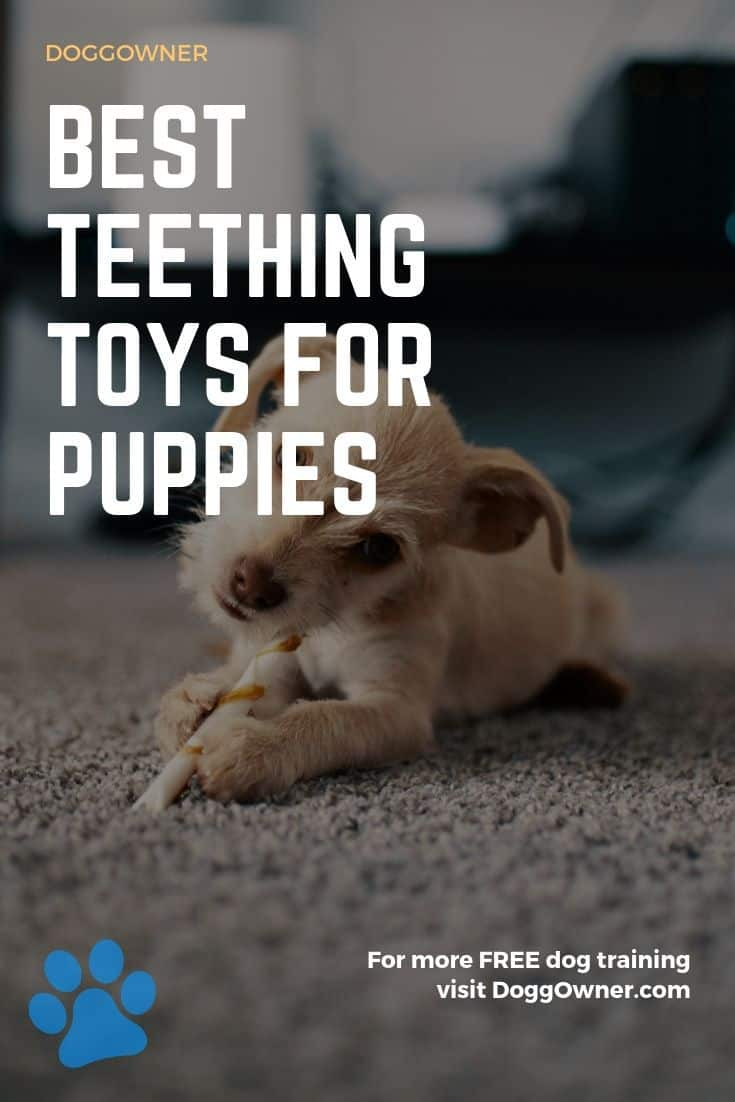 best teething toys for puppies Pinterest image