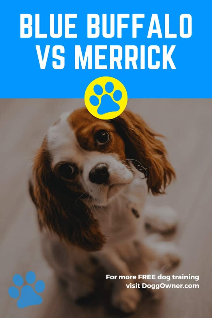 Blue Buffalo Vs Merrick Pinterest Image