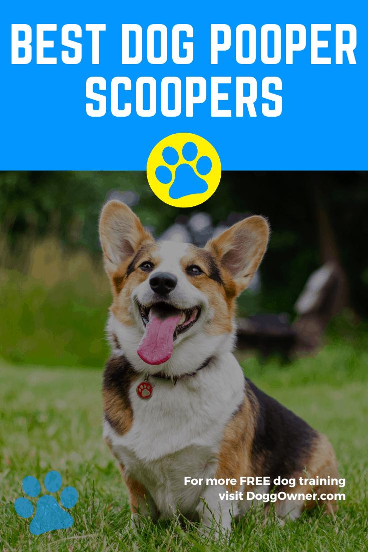 Best dog pooper scoopers Pinterest image.