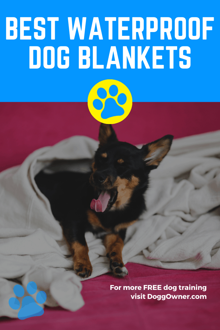 Best waterproof dog blankets Pinterest image