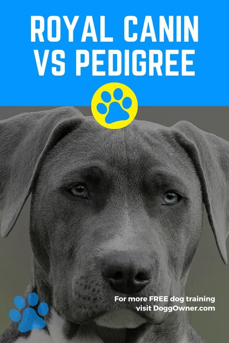 Royal Canin vs Pedigree Pinterest image