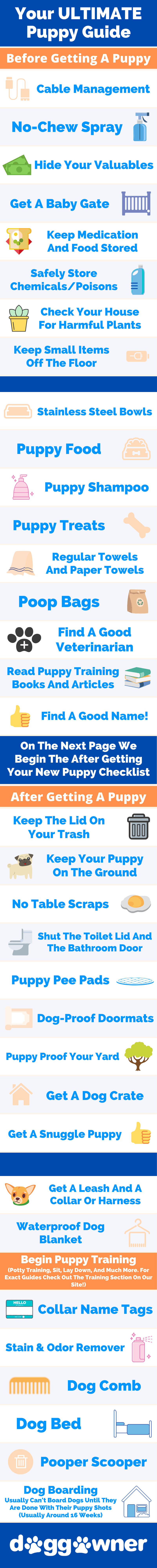 Puppy Checklist And Guide Infographic