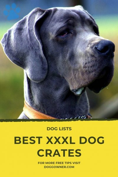 Best XXXL Dog Crates Pinterest Image