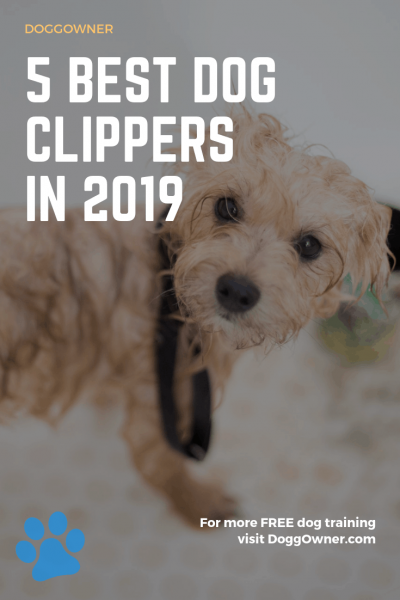 The 5 best dog clippers pinterest image