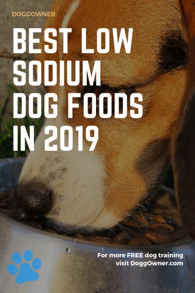 The best low sodium dog food pinterest image