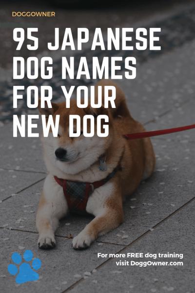 95 Japanese dog names pinterest image