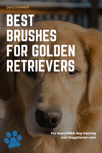 Best brushes for golden retrievers pinterest image