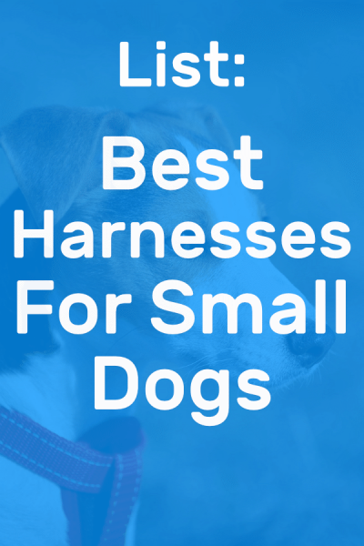 best harnesses for small dogs pinterest picture