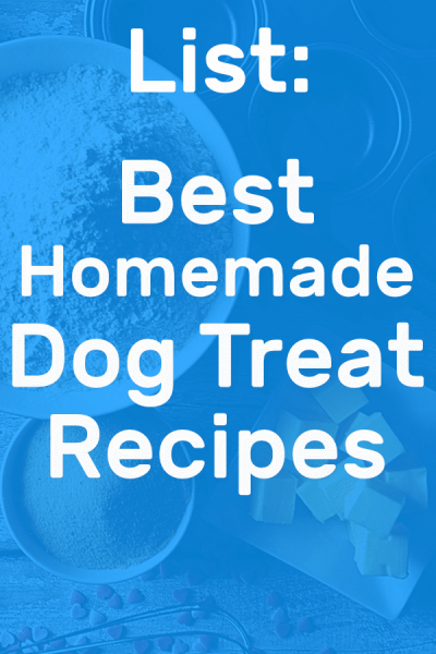 Pinterest photo of best homemade dog treat recipes