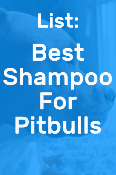 best shampoo for pitbulls pinterest picture