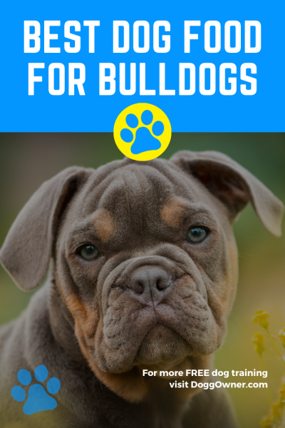 Best dog food for bulldogs Pinterest image