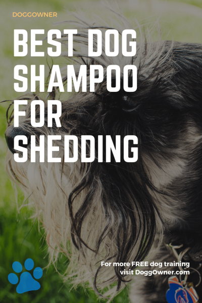 The best dog shampoo for shedding pinterest image